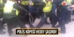 Polis köpeği hedef şaşırdı!
