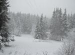 Doğal güzelliğiyle ünlü Şavşat Karagöle yılın ilk karı düştü