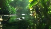İşte Dünya'nın Yeni 7 Doğa Harikası