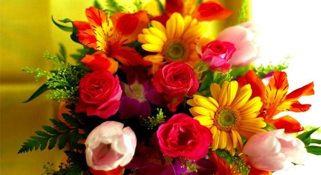 5 milyon çiçek sınırda bekletiliyor