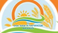 Gıda Tarım ve Hayvancılık Bakanlığında 582 kişi açığa alındı