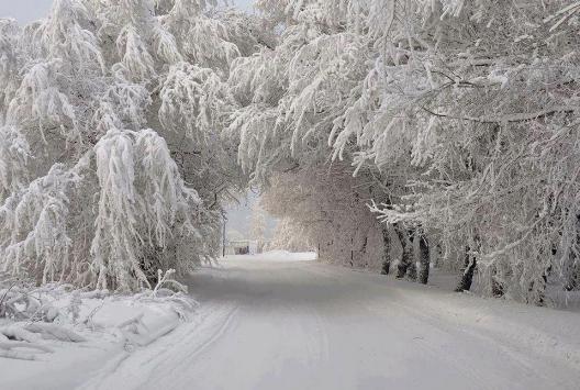 Siyah kar görenleri şaşırttı