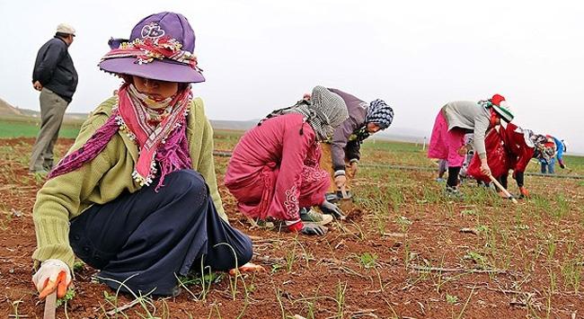 """Suriyeli kadınlar """"günlerinden"""" habersiz"""