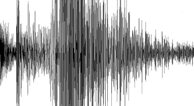 Cezayirde deprem