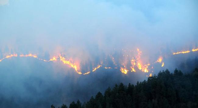Orman yangınıyla ilgili suç duyurusu