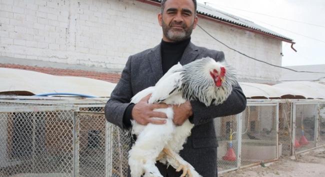 Hobi olarak başladı, çiftlik kurdu
