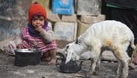 Yoksulluğun Fotoğrafları