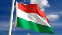 Fitch'den Macaristan'a Kredi Notu Şoku