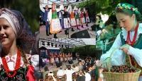 Kiraz festivali Polonezköy'de başlıyor
