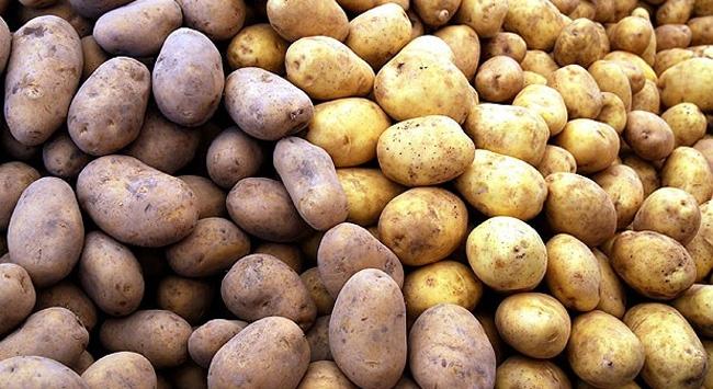 Patatesin fiyatı düşecek