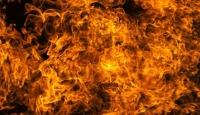 Şili'de Orman Yangınları Sürüyor