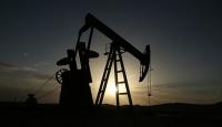 Batı Şeriada petrol yatağı bulundu