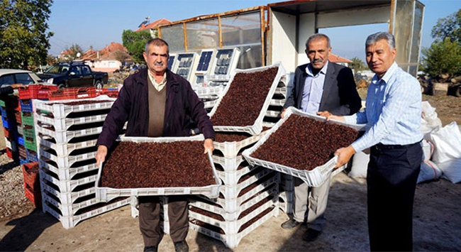 8-9 günde kurutulan üzümü 25 saate kuruttu