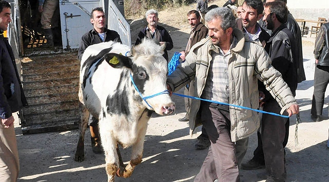 Çiftçilere Hayvan ve Tarım Aracı Yardımı