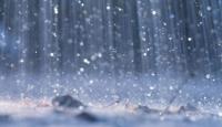 Alanya'da Yağış Hayatı Felç Etti