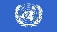 BMnin kimyasal silah raporu Rusyayı ikna etmedi