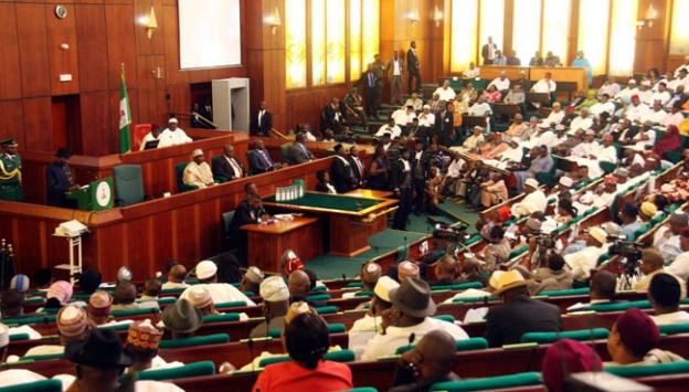 Nijer Meclis Başkanını seçti