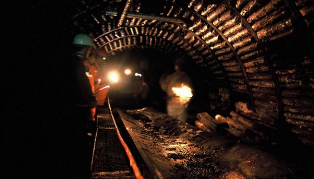 Manisada maden şehitleri için 301 zeytin fidanı dikildi