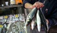 Tekirdağda balık fiyatları