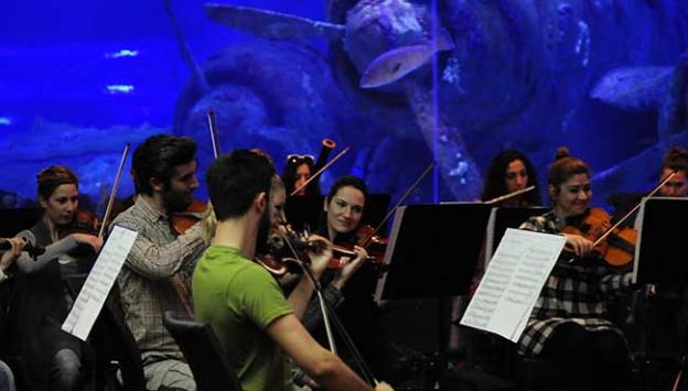 ADSO, çocuklar için akvaryumda konser verdi
