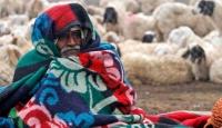 Hindistan'da Kış Kabus Gibi