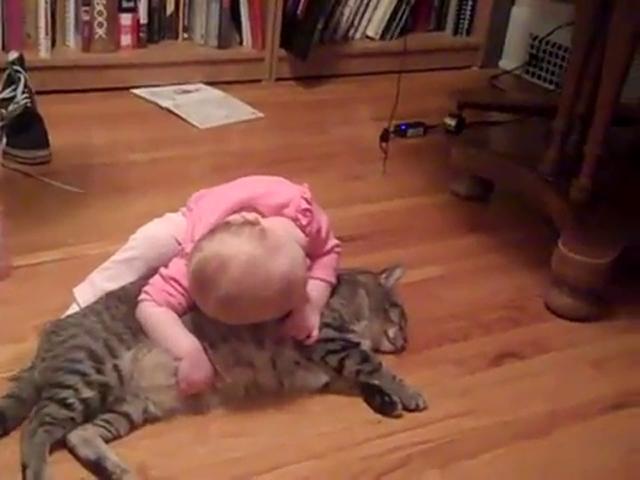 Bebek Kediyi Yastık Gibi Kullanırsa