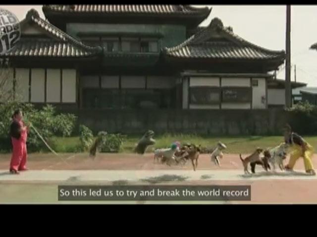 13 Köpekle İp Atlama Rekoru