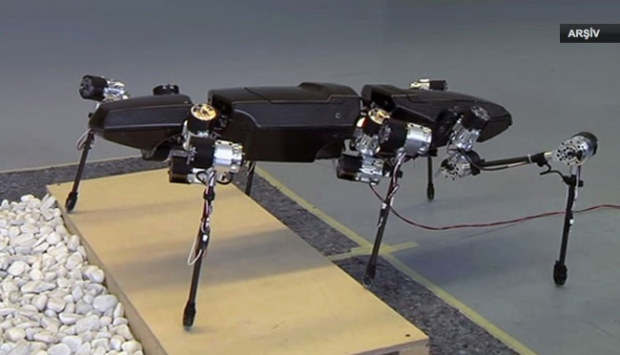 Hamam böceği robotlar geliyor