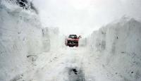 Kar, Erzurum'da Yol Kapattı
