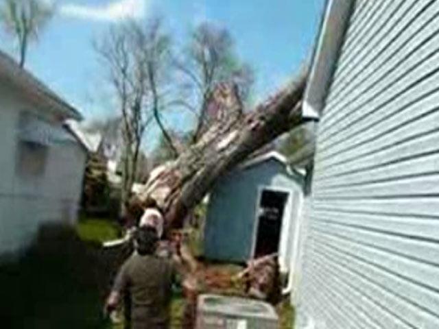 Ağaç Keserken Evini Yıktı