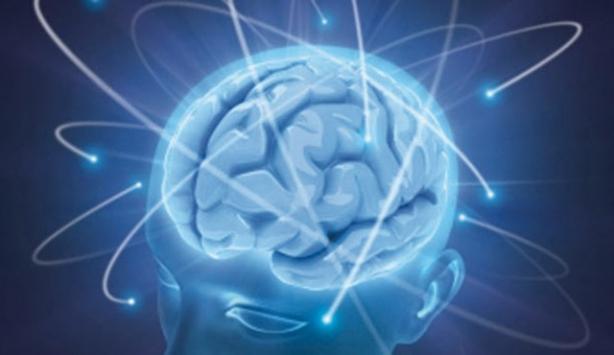 Sabahları beynin hacmi daha büyük