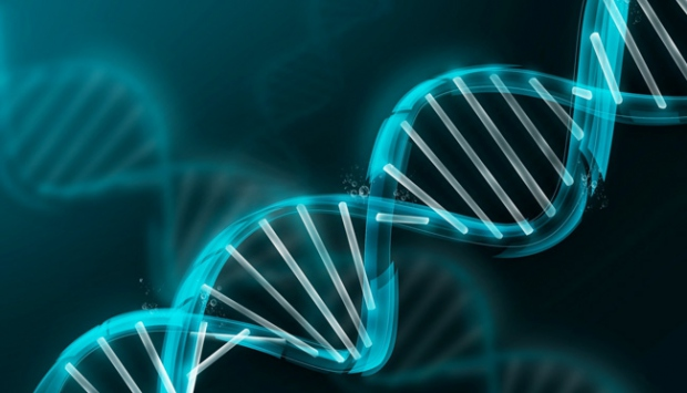 Kilo almak genetik mi?