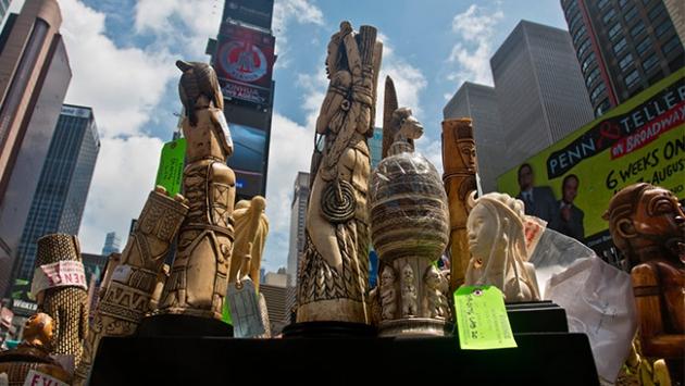 Times Meydanında 1 ton fil dişi imha edildi