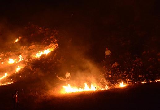 Bagok Dağı'nda orman yangını çıktı
