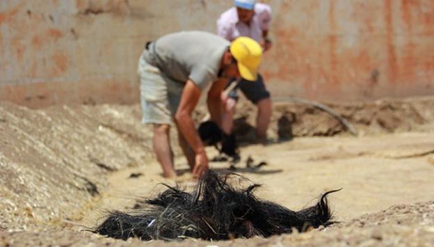 Cami kubbesi inşasında 1,5 tonluk keçi kılı kullanılacak