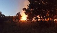 İzmirdeki orman yangınları paniğe yol açtı
