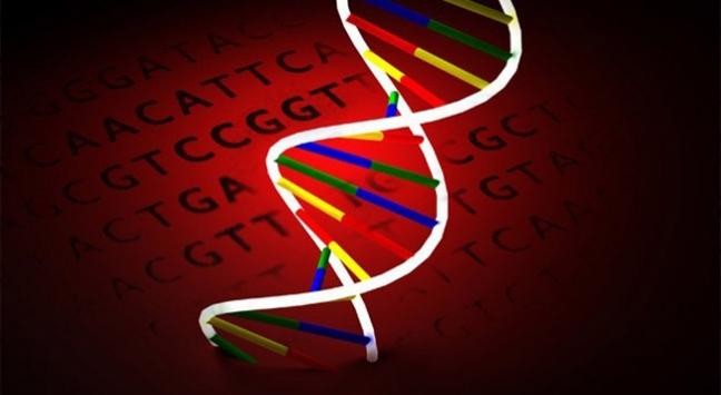 'Siyasi yönelim de genlerle bağlantılı olabilir'