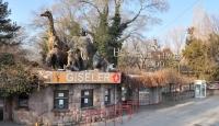 Ankara Hayvanat Bahçesi Artık Ücretsiz