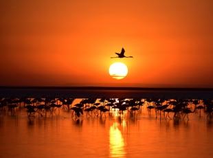 Tuz Gölünün değişmeyen rengi