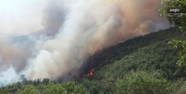Mersinde 15 hektar alan zarar gördü