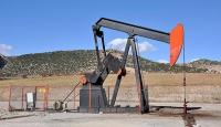 Brent petrol 4 dolar sınırında