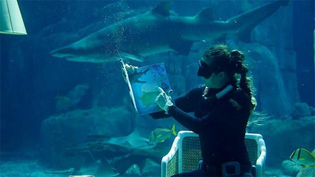 Su altında kitap okudu, voleybol oynadı