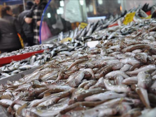 Kar yağışı balık fiyatlarını yüksellti
