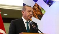 """""""Suriyedeki sorun çözülmeden bölgede huzur ve güvenin tesisi mümkün değil"""""""
