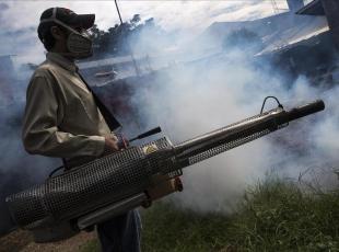 Bolivyada Zika salgını!