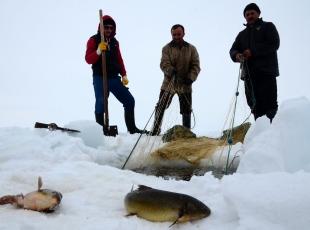 Donan gölde balık avı