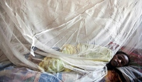 Nijeryada lassa sıtması 101 can aldı