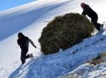 Karlı dağlarda zorlu yolculuk