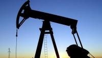 Türk Petrollerinden bu yıl 2 milyar dolarlık sondaj