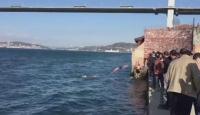 Soğuk suya aldırış etmeden kulaç attılar